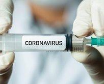 Koronavirüs aşısı dağıtımı ne zaman yapılacak?