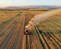 On binlerce çiftçiyi yakından ilgilendiriyor! Süre uzatıldı