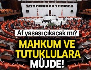 Af yasası çıktı mı? Mahkum ve tutuklulara iyi haber! Abdulhamit Gül'den son dakika af yasası açıklaması!