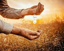 Çiftçiye kuraklığa karşı destek