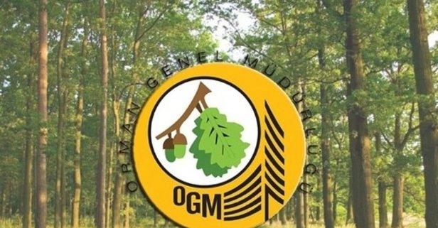 OGM 2080 işçi alımı yapacak!