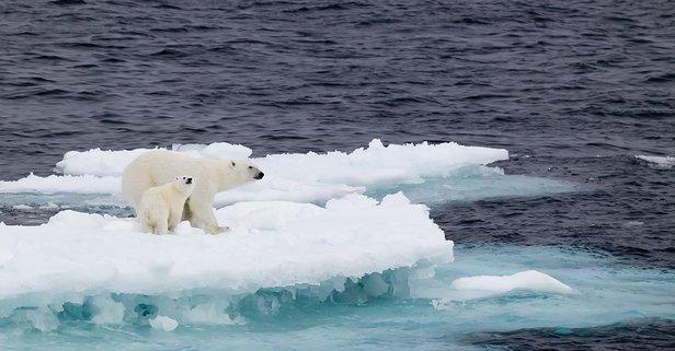 İklim Zirvesi yarın başlıyor