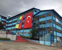 Türkiye ahtapotun kollarını kesiyor