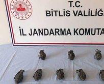 Bitlis'te PKK'ya darbe! Hepsi ele geçirildi