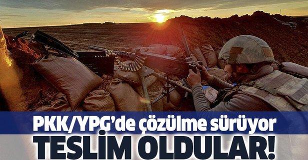 2 PKK/YPG'li terörist daha teslim oldu
