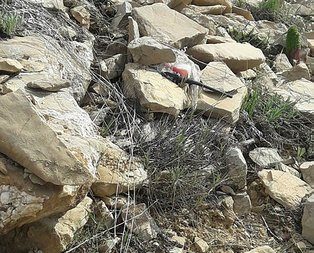Tuncelide PKKya büyük darbe