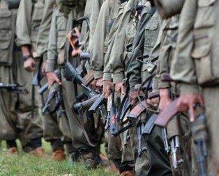 Suudi Arabistan gazetesinden PKKlı teröristle röportaj