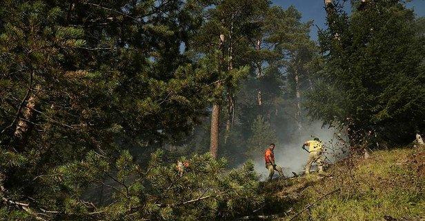 Kastamonu'daki yangınlar kontrol altına alındı