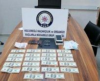Zonguldak'ta sahte dolar operasyonu