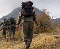 ABD ve Fransa'dan PKK'ya talimat Türkiye'ye saldırın!