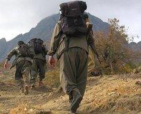 HDP'lilerin PKK bağı ortaya çıktı!