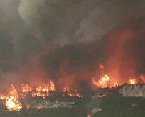PKK Hatay'da ormanları yaktı!
