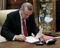Erdoğan imzaladı! İşte Eylem Planı'nın detayları