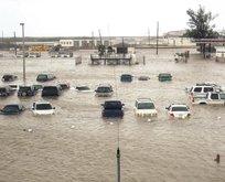 Korkunç Irma