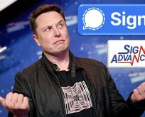 Signal uygulaması Signal Advance şirketinin mi? Signal'in hisse senedi var mı?