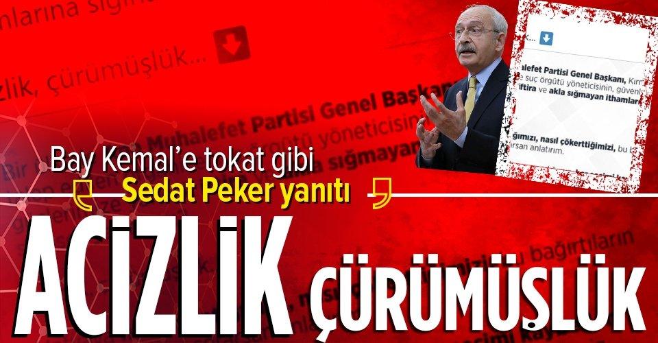 Sanayi ve Teknoloji Bakanı Mustafa Varank'tan mafya lideri Sedat Peker tepkisi: Fuat Avni'den medet uman muhalefet... 16
