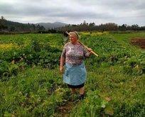 Trumpun çiftçi kız kardeşi sosyal medyayı salladı