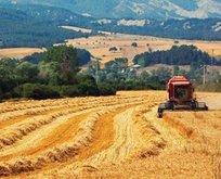 25 Aralık çiftçiye hububat-baklagil-dane mısır desteği hesaplara yattı mı?