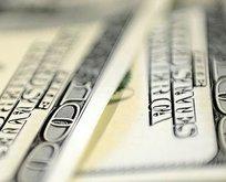Dolar tepetaklak