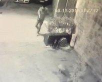 Üsküdar'da silahlı maganda sokak kedilerine kurşun yağdırdı