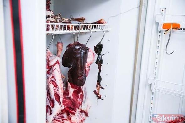 Duyanlar inanamıyor! Tam 10 yıldır çiğ et ile besleniyor