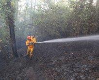 Kastamonu'da orman yangını! Çamlık alana yayıldı
