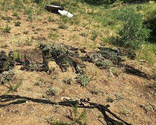 Hakkari'de PKK'ya operasyon!