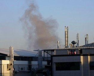 Pendik'te kuru yemiş fabrikasında korkutan yangın