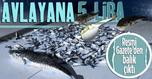 Balon balığı avlayana 5 TL