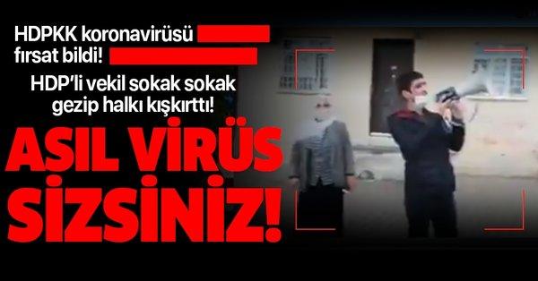 HDPKK koronavirüsü fırsat bildi! HDP'li vekil Remziye Tosun sokak sokak gezerek halkı kışkırttı!