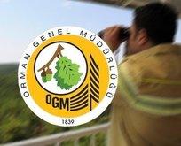 OGM işçi alımı başvuru 2021! KPSS şartsız OGM 2.083 personel alımı başvuru şartları!