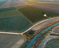 Türkiye'de 2020 yılında 541 bin hektar alanda arazi toplulaştırması tamamlanacak