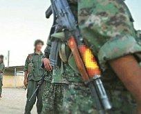 Azerbaycan'a karşı PKK'dan eğitim alacaklar!