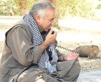 İyice köşeye sıkışan PKK elebaşı Murat Karayılan Trump'a ağladı!