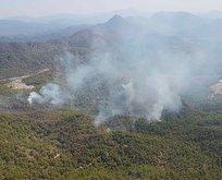 Muğla'daki yangın kontrol altında
