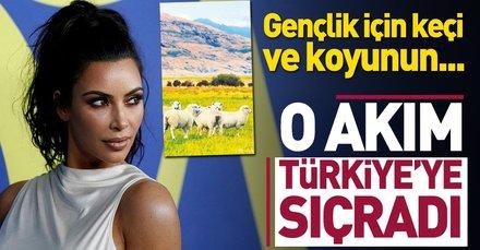 Plasenta akımı Türkiyeye sıçradı