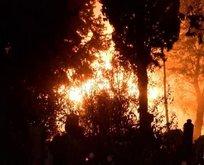 Gece yarısı alev alev yandı!