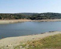 Suyu boşaltılan göletten kafatasları çıktı!