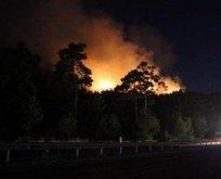 Antalyada üç ayrı noktada yangın
