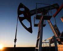 Brent petrol fiyatlarında düşüş