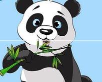 13 Şubat 20.30 Hadi ipucu sorusu: Pandaların olmazsa olmazları nedir?