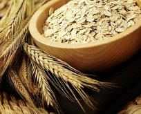 Sıfır gümrükle tahıl ithalatı
