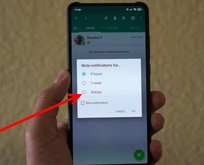 Uzun yıllardır bekleniyordu! WhatsApp'ın yeni müthiş özelliği geldi!