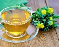 Bitki çayınız zehir olmasın