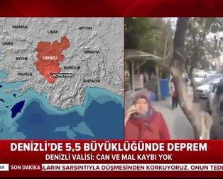 Denizli depremi Marmara'yı tetikler mi?
