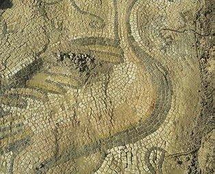 Adıyaman'da ördek figürlü mozaik bulundu
