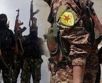 YPG/PKK'lıların DEAŞ ile kanlı ittifakı! Yine serbest bıraktılar