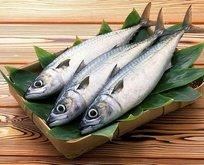 Tiroidin çaresi balık