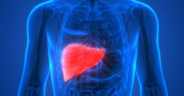 Karaciğerin rengi yeşil