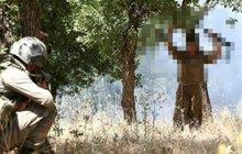 MSB duyurdu: 3 terörist teslim oldu